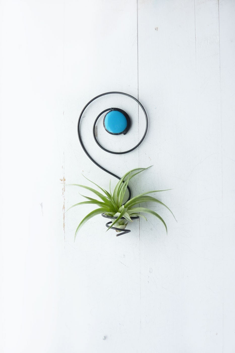 Air Plant Holder Spiral Wall Hanging With Glass Bead