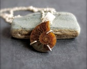 Sterling Silver Fossil Ammonite Pendant Necklace Brown Orange Rust Natural Rustic Simple Boho Jewellery