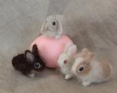 Needle Felted Pet Bunny, Tiny