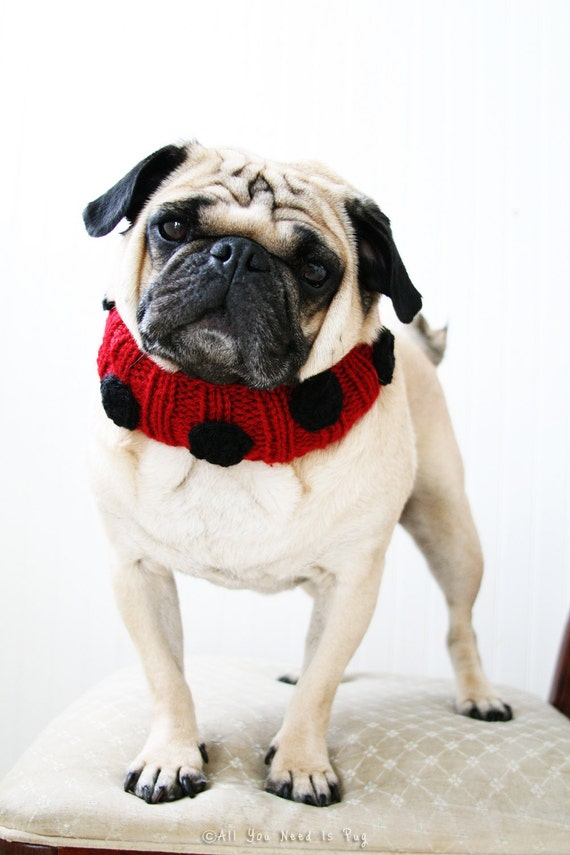 Lovely Ladybug Knit Dog Collar - Dog Scarf - Dog NeckWarmer - Dog Clothes - Pug Scarf - Pug Neck Warmer - French Bulldog Neckwear