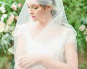 Sadie tulle veil with juliet cap and vine detail
