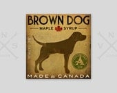 CUSTOM Brown Dog Maple Syrup Stretched Canvas Panel  signed chocolate lab wall art