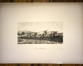 1866 oxen ploughing original antique farm animal print of cattle