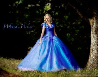 Cinderella Dress - Cinderella Costume, Adult Cinderella Dress 2015, New Cinderella ball gown