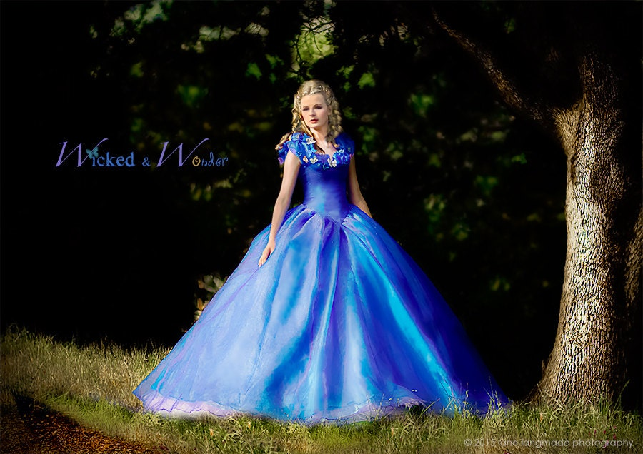Cinderella Dress Cinderella Costume Adult Cinderella Dress