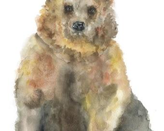 Brown Bear Watercolor Painting 4 x 6 Fine Art Giclee Reproduction - Nursery Art