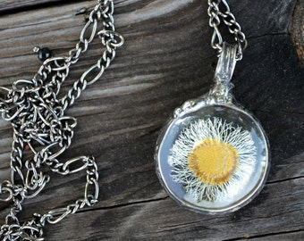 Real Flower Hippy Jewelry Dry Pressed Daisy Aster Necklace No Chemicals No Dyes Long Chain Hippy Style (2289c)