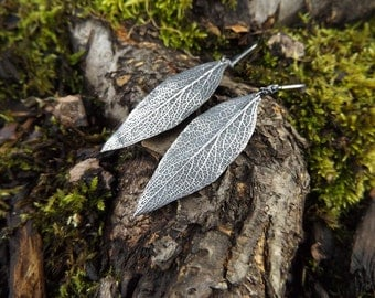 Salvia apiana- White Sage - Large Leaf  - Artisan Fine Silver Earrings by Quintessential Arts