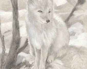 Arctic Fox Original Illustration