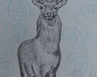 Stag. Aceo.