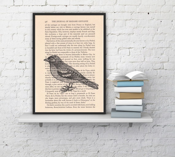 Christmas Sale Dictionary page book art print Sparrow Print on Vintage Book altered art dictionary page illustration book print BPAN184