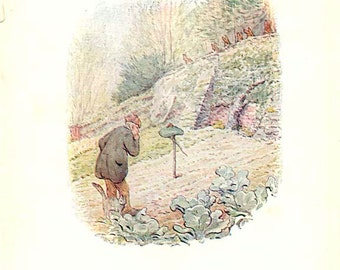 Peter Rabbit's friend BENJAMIN BUNNY Antique 1904 Story Book Page Beatrix Potter Book Plate 81