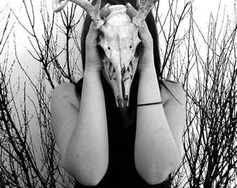 Deer Skull Being Held by Model as a Mask