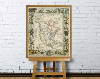 North America map - Old map restored   - America, reproduction of a illustrated vintage map