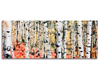 Autumn Trees Art - 'Aspen Grove' 48x19in - Autumn Landscape Metal Print - White Tree Artwork w/ Orange Colors - Fiery Fall Traditional Decor