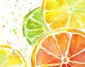 Citrus Fruit Watercolor, Art Print, Food Painting, Lime, Oranges, Lemons, Kitchen Decor, Juicy, Colorful Painting, Green Yellow Orange