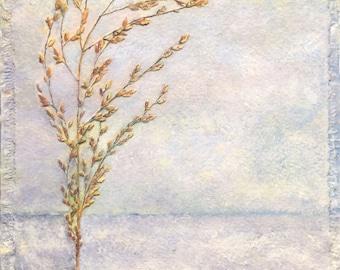 February Weeds
