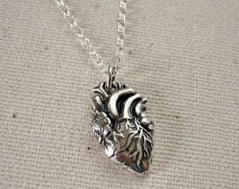 Anatomical Heart Necklace Sterling Silver - Love Jewelry