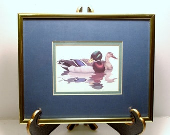 Beautiful Ducks Framed Art Print