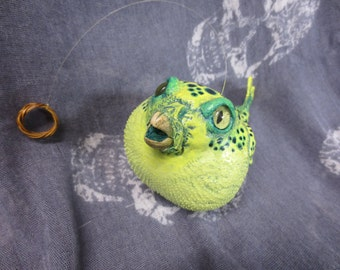 Taxidermy Pufferfish, Green Spotted Pufferfish, Fish Taxidermy