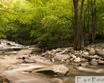 Springtime Vermont stream photograph 6x9 photo size 8x12 print 11x17 peaceful nature serene calm