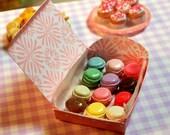 Miniature Dozen Box of Macarons (playscale 1:6 scale diorama play mini for fashion/teen dolls) Dessert Macaroons