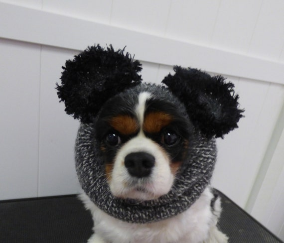 Knitting Pattern Dog Snood : Grey Mouse Dog Snood 100% Wool Hand Knitted dog snood/