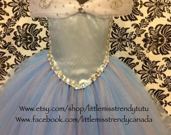 Cinderella Inspired Tutu Dress, Cinderella Tutu Dress, New Cinderella Tutu Dress, Tutu Dress with Butterflies, Cinderella, Blue Tutu Dress