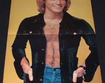 Andy Gibb 1977 fold-open poster