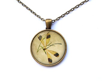 Insect necklace Dragonfly pendant Antique jewelry CWAO43