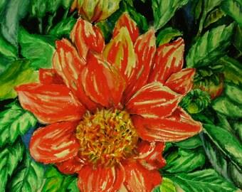 Orange Dahlia, 14x17 Oil Pastel Flower Drawing on Bristol Board, Orange Flower, Nature, Wall Art, Dahlia Flower, Oil Pastel Dahlia, Flower