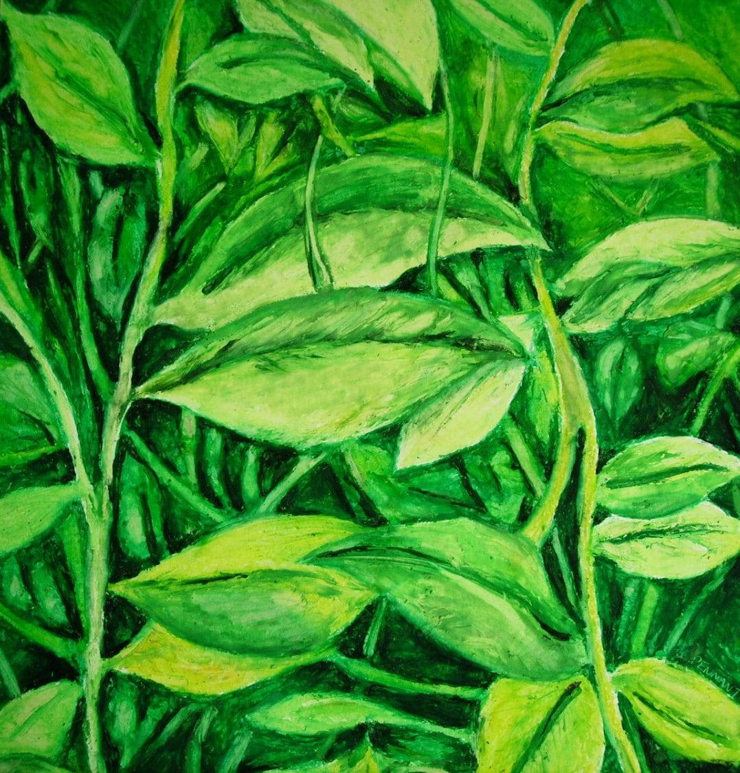 for t de plantes feuilles vertes 14 x 17 original huile. Black Bedroom Furniture Sets. Home Design Ideas