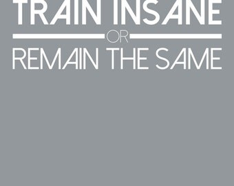 Gym Wall Decal - Train Insane or Remain the Same - Fitness Exercise Wall Decor Gym Decor Fitness Motivation Workout Inspirational Quotes