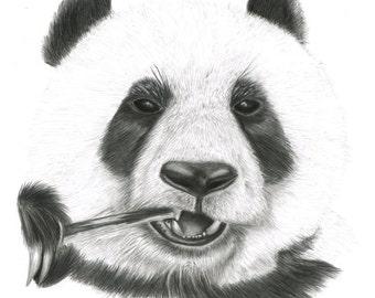 Panda giclee print/ Giant Panda fine art print/ panda graphite drawing