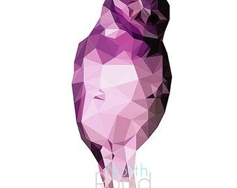 Geometric Owl Digital Print
