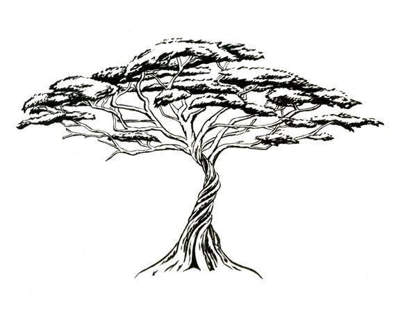 Pfeifendes thorn schwarz wei grafik zen von irenesgoodies - Dessin bonzai ...