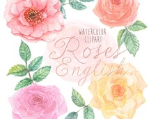English Roses Watercolour Clipart. Hand painted watercolour, floral, wedding diy elements, flowers, invite, printable
