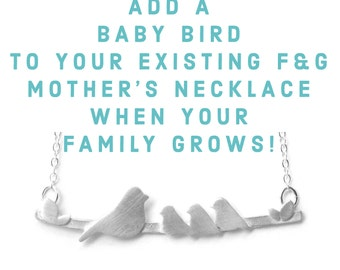Add a Baby Bird to the Bird Mothers Necklace you already own as your Family Grows. Upgrade here and ship to us to add to your necklace!