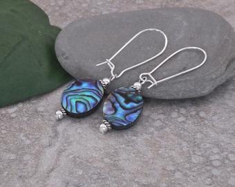 Earrings Abalone Silver Kidney Wire Dangle Earrings