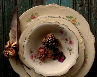 Homer Laughlin China collection. Cottage Romance. French Farmhouse. Woodland Forest Rustic Romance. Virginia Rose Plate Bowl