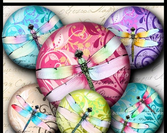 INSTANT DOWNLOAD New Colorful Dragonflies (718) 4x6 and 8.5x11 12mm circles Printable Digital Collage Sheet glass cabochon earrings images