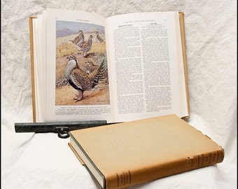 Illustrated Bird Books -  Vintage Hard Cover 2 Volume Set of The Book Of Birds by The National Geographic Society 1939