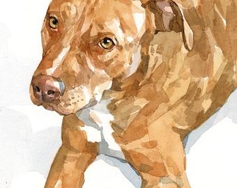 Watercolor Pet Portrait 5x7 Dog Painting