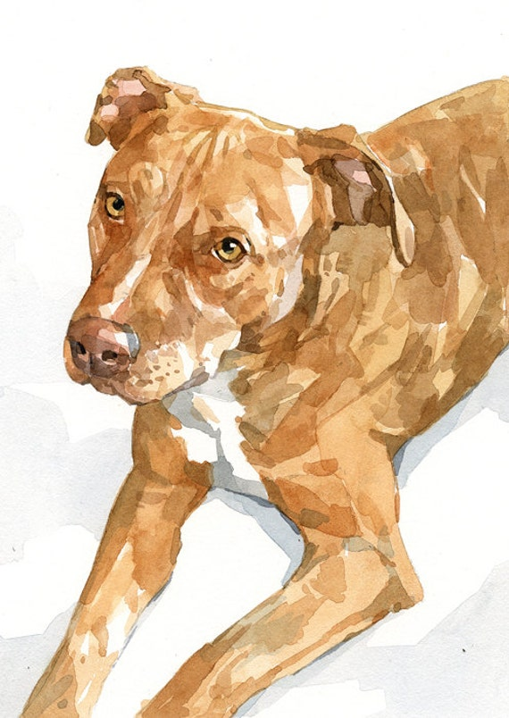 Watercolor Pet Portrait 5x7 Dog Painting