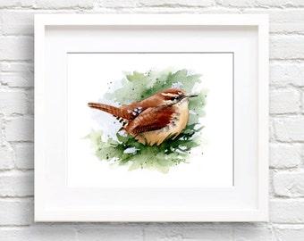 Carolina Wren Art Print - Bird - Wildlife - Watercolor Painting - Signed by Artist DJ Rogers - Wall Decor