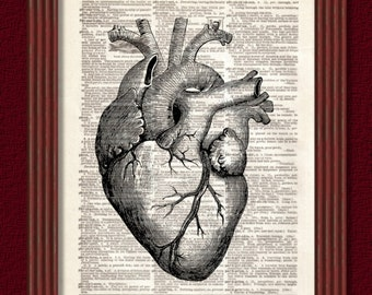 BUY 2 GET 1 FREE Human Heart Dictionary Art Print Page Anatomy Skeleton biology muscle science geek Dictionary page medical Dorm Decor Wall