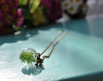 Necklace TERRARIUM with MOSS Moss
