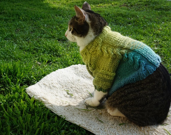 blue green hombre knit cat sweater