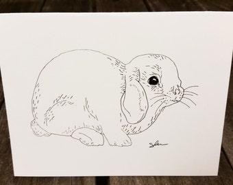 Bunny Greeting Card