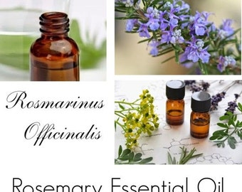 Rosemary Essential Oil, Rosemary Oil, Rosemary Essential Oil Uses, 100% Pure Authentic Rosemary EO